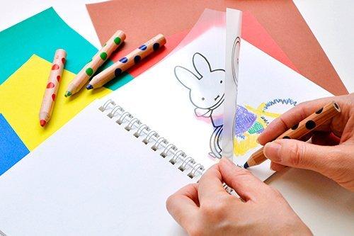 http://www.ehonnavi.net/shopping/item.asp?c=4901480316505&LID=TEM