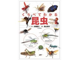 【news】昆虫採集のおともにぴったり!トンボやバッタ、ゲンゴロウまで身近な虫など約750種の違いが一目瞭然の図鑑はコレ!