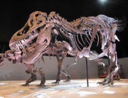【招待券プレゼント】体感できる恐竜王国へようこそ!「ギガ恐竜展2017ー地球の絶対王者の謎ー」開催