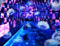 【news】すみだ水族館で宮沢賢治の世界を体感!アーティスト清川あさみプロデュース『Fairy tale in Aquarium~水と幻想の世界~』