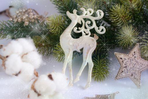 【クリスマス】小学5、6年生にプレゼントしたい、クリスマス&冬のお話