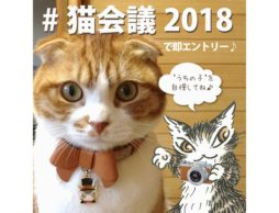 【news】締切迫る!ネコちゃん限定「うちの子自慢写真」大募集