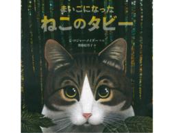 【お知らせ】イソザキ編集長、朝日新聞 連載「効く絵本 たぬき書房」「猫の愛らしさ どっぷり」が掲載