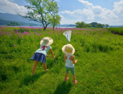 元気な子ども応援!保育のプロに教わる夏の外遊びのヒント~第12回~