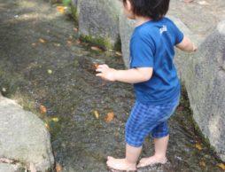 夏だ!水遊びだ!東京都で水遊びを楽しめるスポット6選