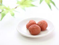 子どもと作る梅干しで夏バテ予防!食べやすいアレンジで、暑い夏を乗り切ろう!