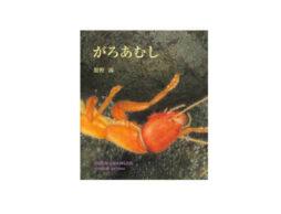 暗黒世界で生きる虫の一生とは。緻密な絵で描く渾身の絵本『がろあむし』