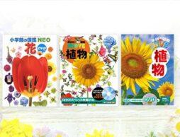 【植物と花の図鑑】幼児から小学生、大人まで楽しめる&学べるおすすめ30選!