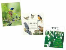 【今週の今日の1冊】愛鳥週間によせて。鳥に詳しくなれる楽しい本大集合!