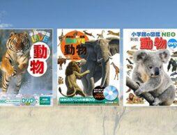 【最新の動物図鑑】もっと知りたい子どもの探求心を育むおすすめ40選!
