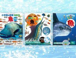 【最新版】魚や水の生き物の図鑑36選! 人気の深海生物も。
