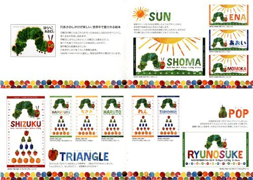 http://www.ehonnavi.net/shopping/item.asp?c=4562223009971